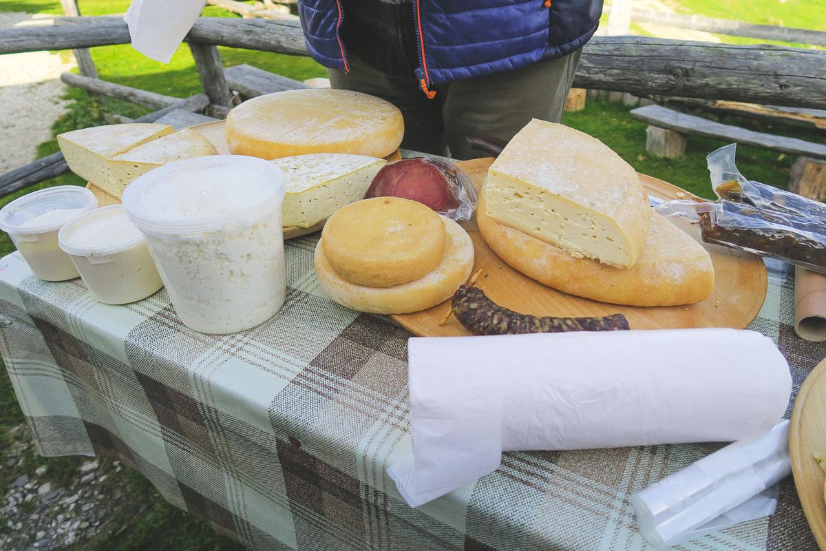 Alpine cheeses Slovenia