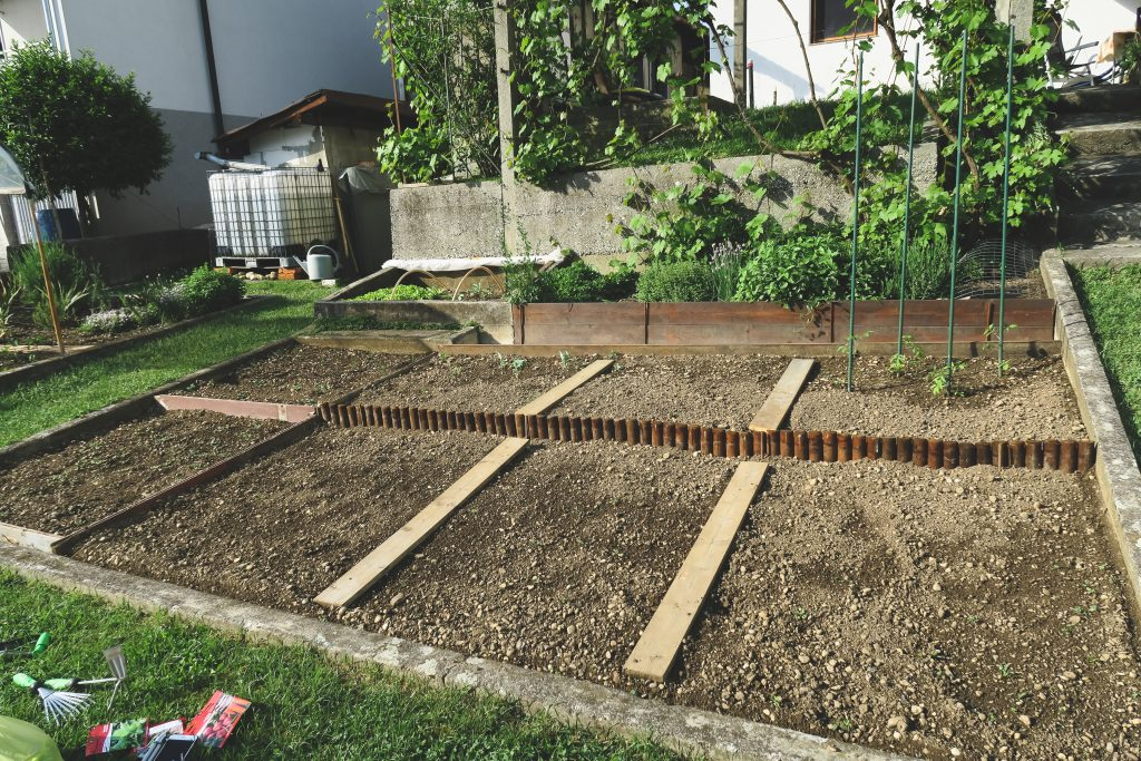 vegable garden