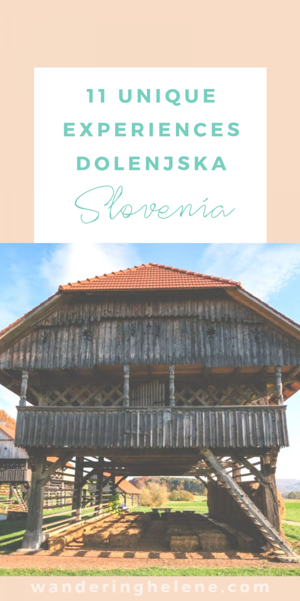 11 unique experiences and sightseeing ideas for Dolenjska region of Slovenia. This region borders Croatia and is known for its wine, castles, food, and beautiful nature like the virgin forests. #Slovenia #dolenjska #tourism #travel #europeantravel