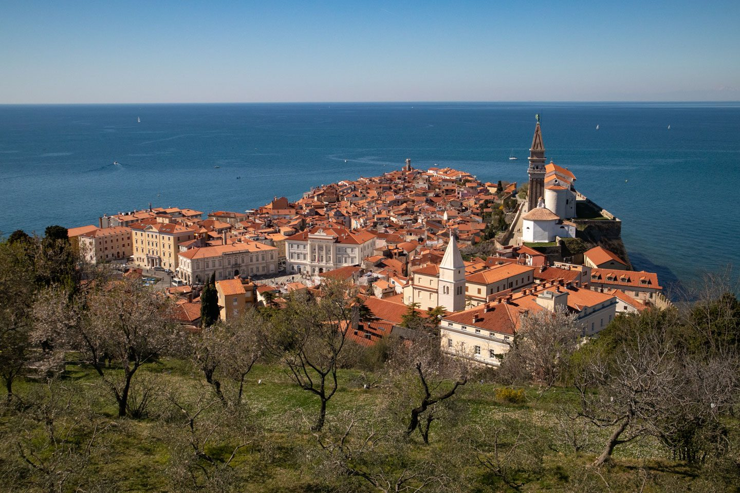 view of piran slovenia