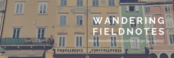 wandering fieldnotes