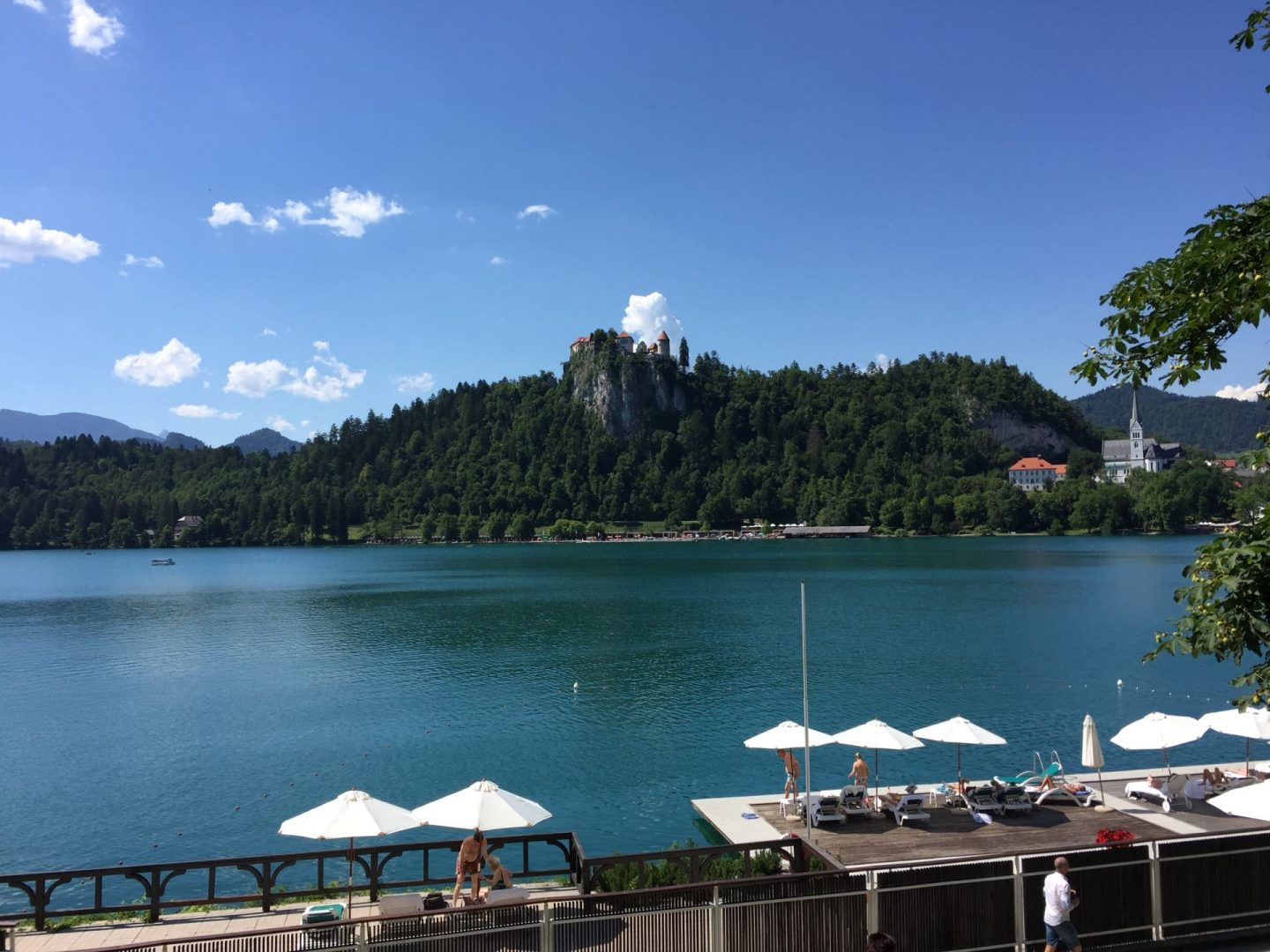 swimming in Lake Bled