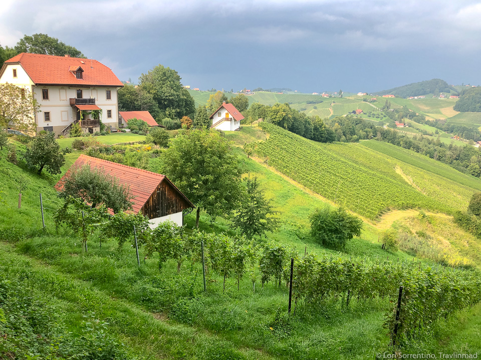 South Styria wine road