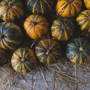 slovenian halloween