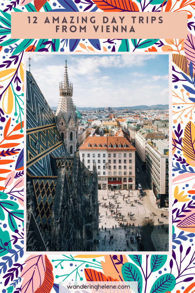 image of vienna for a pinterst pin